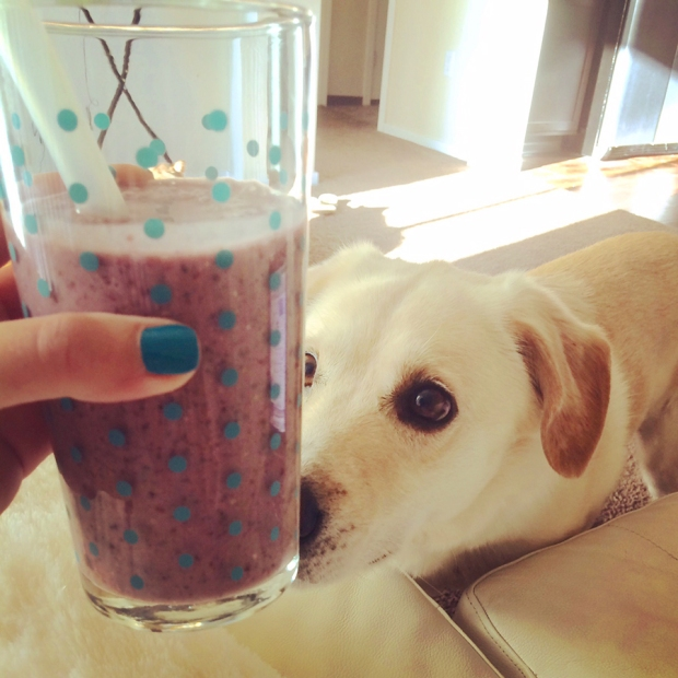 Banana Almond Blackberry Smoothie for breakfast! | THE REAL LIFE | food, fitness, healthy eating, indulging, intuitive eating, weight maintenance, week recap, week after running a race