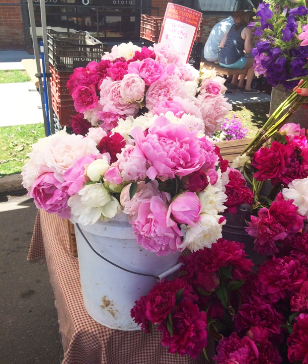 Peonies Shopping at the South Pearl Street Farmers Market in Denver, Colorado | THE REAL LIFE blog | lifestyle, food, recipes, foodie, fitness, running, exercise, healthy, organic, local food