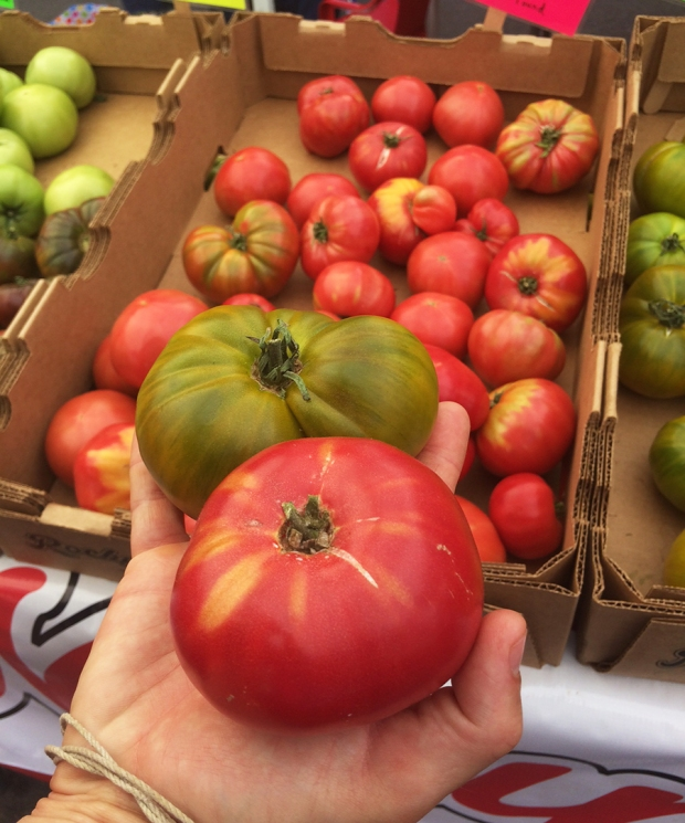 Tomatoes, Shopping at the South Pearl Street Farmers Market in Denver, Colorado | THE REAL LIFE blog | lifestyle, food, recipes, foodie, fitness, running, exercise, healthy, organic, local food