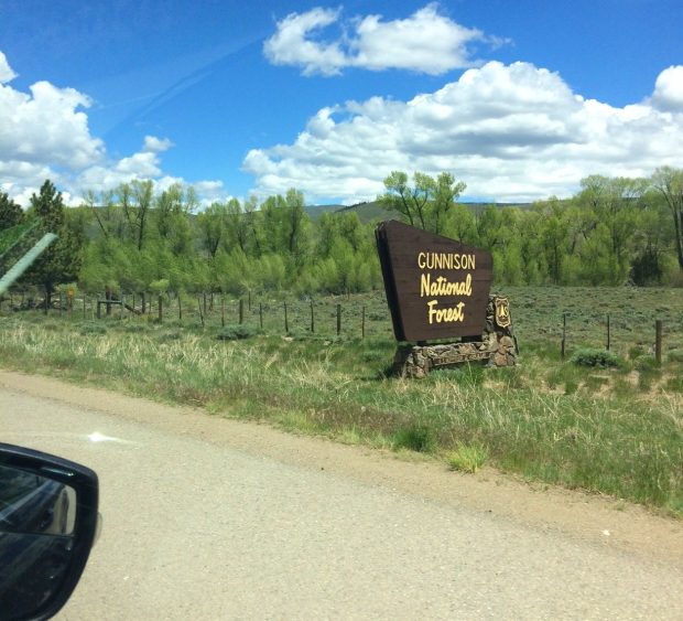 Gunnison National Forest on the way to Crested Butte