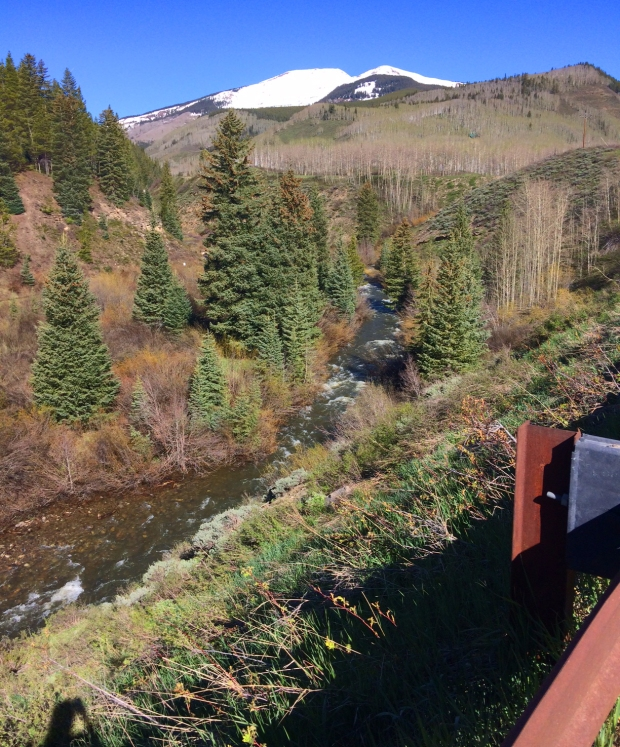 Run on Lower Loop Trail, Crested Butte, Colorado